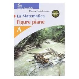 MATEMATICA--FIGURE-PIANE